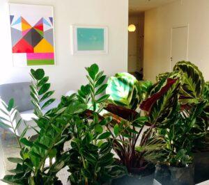 interiör med växter i förgrunden.
