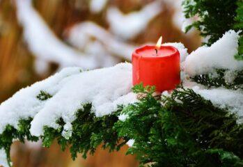 rött blockljus, på gran med snö